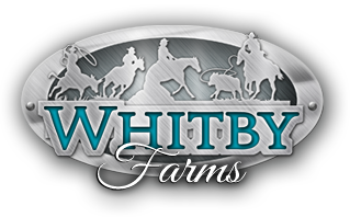 Whitby-Farms-horses
